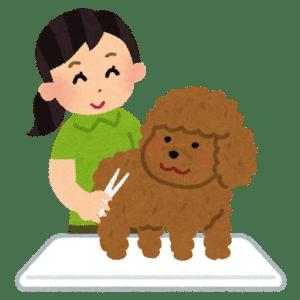 dog grooming, home grooming,