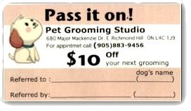 dog grooming card, grooming service,
